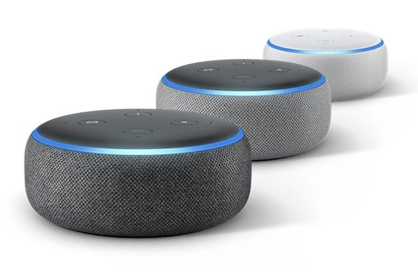 Alexa, Google Home and Amazon Echo Integration